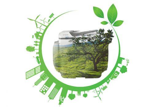 Cómo desarrollar una cultura de sostenibilidad